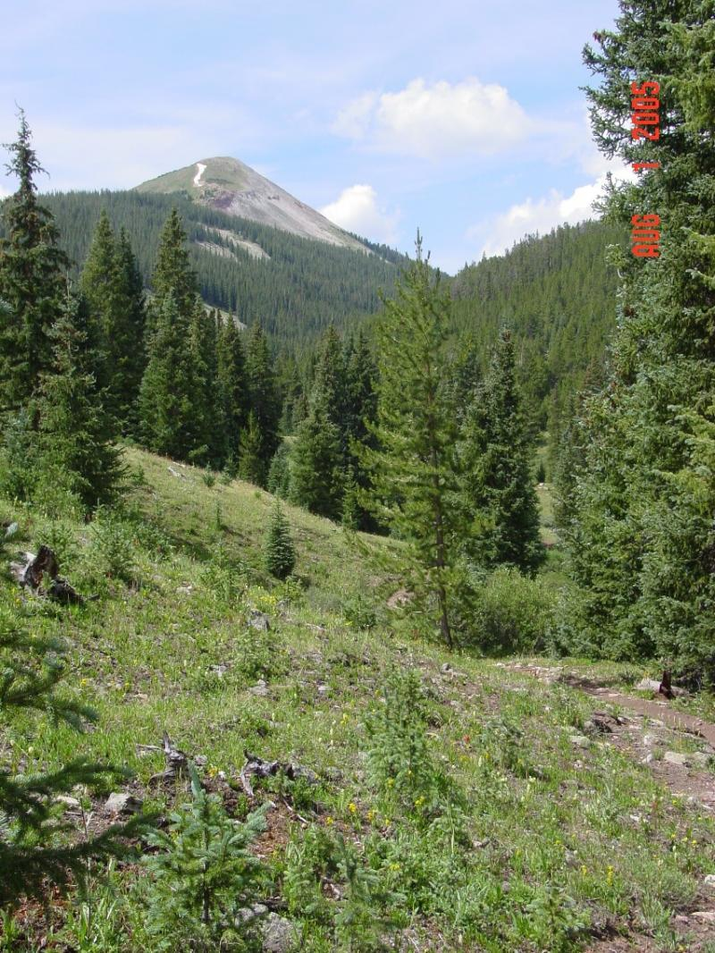 Colorado Trail: Searle Pass