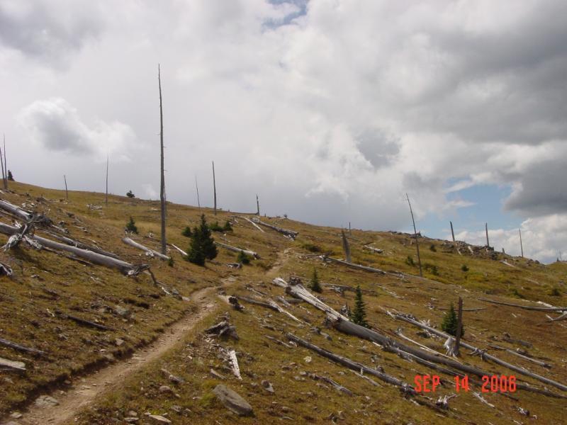 Monarch Crest Trail