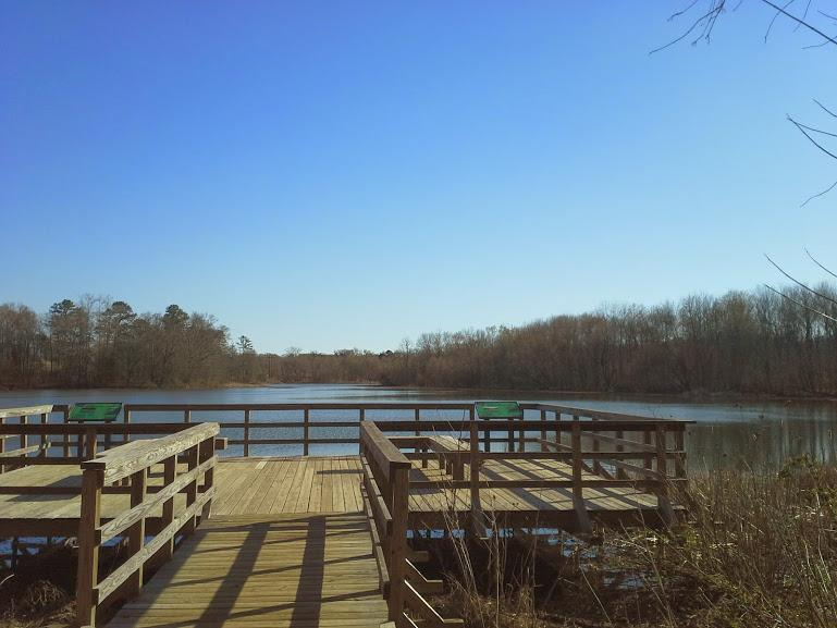Lake Conestee Nature Park Mountain Bike Trail In