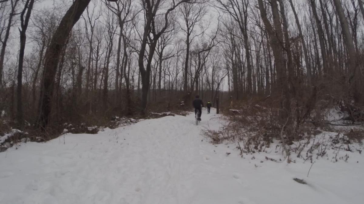 Wolf Pond Staten Island