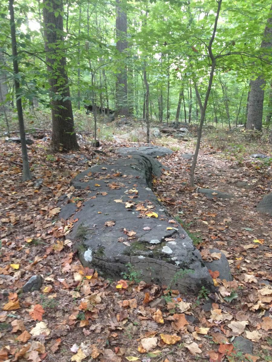 Sourland Mountain Preserve Mountain Bike Trail In