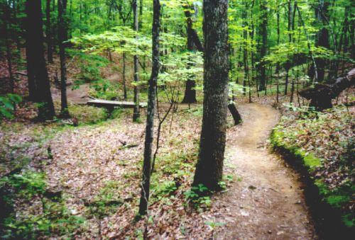 oak-mountain-mtb.jpg