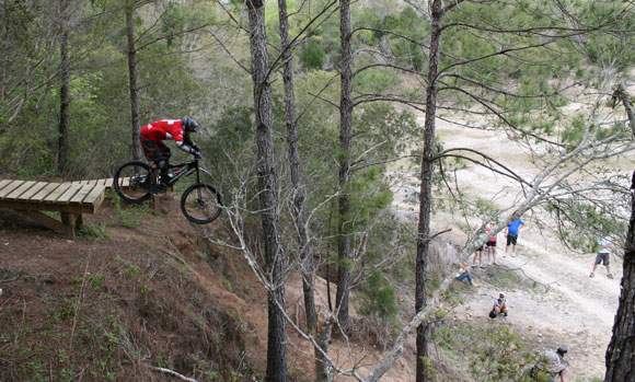 Florida MTB Trail Challenges - Singletracks Mountain Bike News
