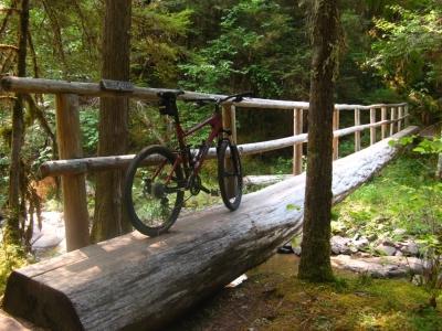 oakridge-mtb-trail