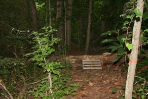 impromptu-log-ramp