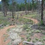 buffalo-creek-trail