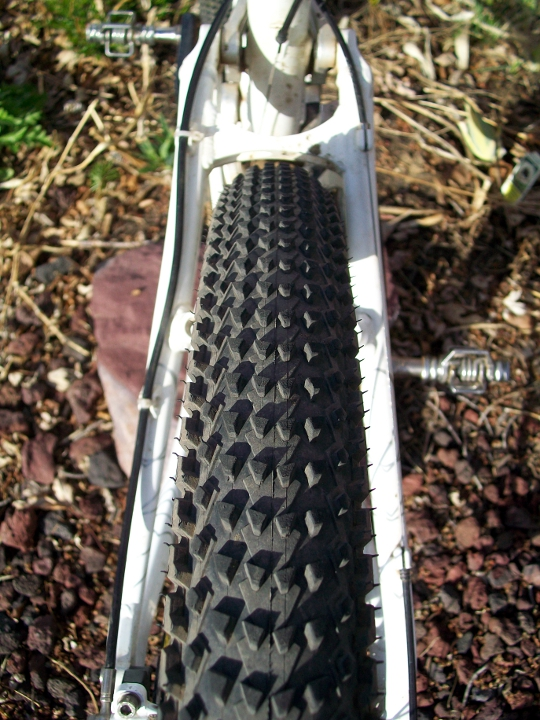 Velociraptor 29er The rear tire mounted in the