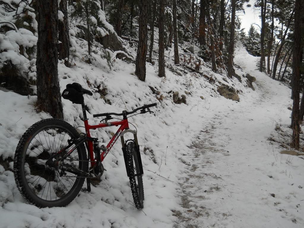 Glacier Gloves Winter Cycling Gloves Singletracks