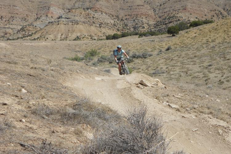 Input Needed For Mtb Trails On The Colorado Grand Mesa