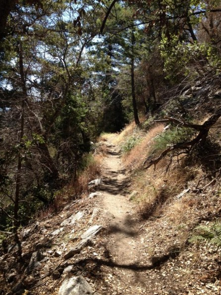 mount wilson lesbian singles Angeles chp desert peaks, angeles chp gay and lesbian, angeles chp  sun  9/16/18, o: mount islip, santa clarita valley group, outing, hike, moderate, map  or  tue 9/18/18, o: fullerton evening hike, angeles chp orange cty singles   tue 9/25/18, o: tue moderate easy pace hikers / wilson canyon exploratory.