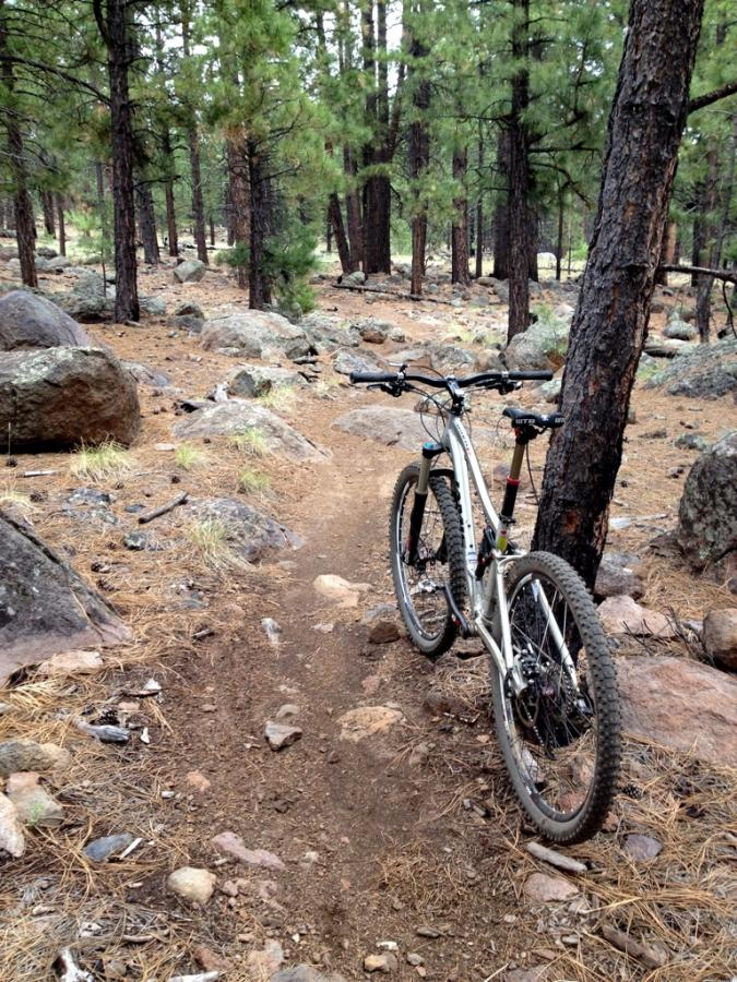 The Jamis Dakar 650b Pro handled the Fort Valley gnar with ease.
