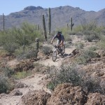 This is about as technical as it gets in the Sweetwater Preserve--just a few bumps on the Red Canyon Trail