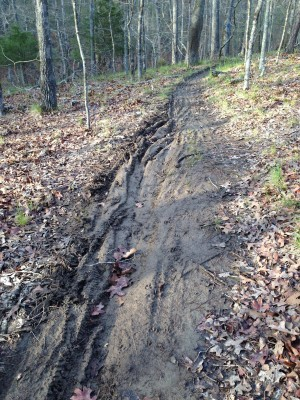 The Lakeview Loop at HKSP used to be narrow buff singletrack.  These ruts will hold water, and continue to get worse over time.  Most of the trail was left badly rutted after the XTERRA event.