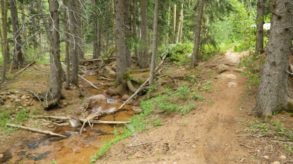 Typical piece of the sweet singletrack paralleling Bear Creek (SIngletracks photo by RoadWarrior)
