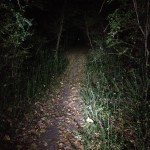Familiar trails feel completely different in the dark.