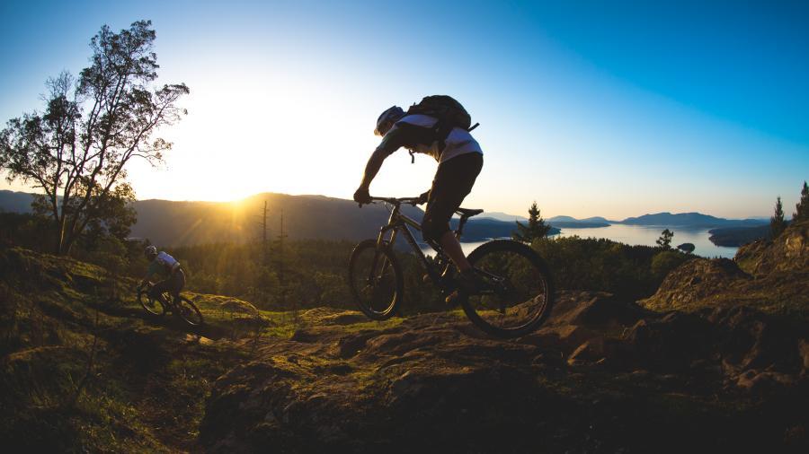 Downhill Mountain Bike Travel Case