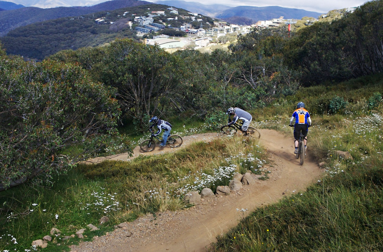 Into Thin Air At Mt Buller Exhilarating Mountain Biking In