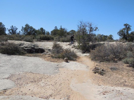 Easy rock slabs punctuate the early portions of the Guacamole Trail.
