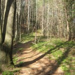 Section of the Pinhoti Trail near Ellijay, Georgia. Photo: mtbgreg1.