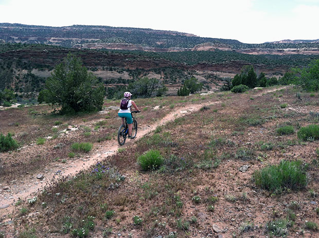 An easy trail that you're comfortable with is always a good place to go back to after a bad crash.