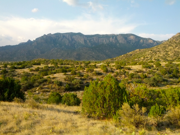 View of the Sandia Mountains from the Foothills trail system. Photo by: jkldouglas