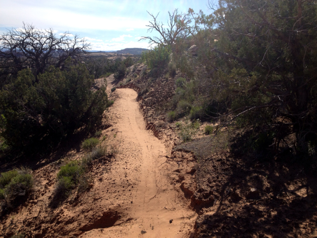 Brand-new dirt singletrack