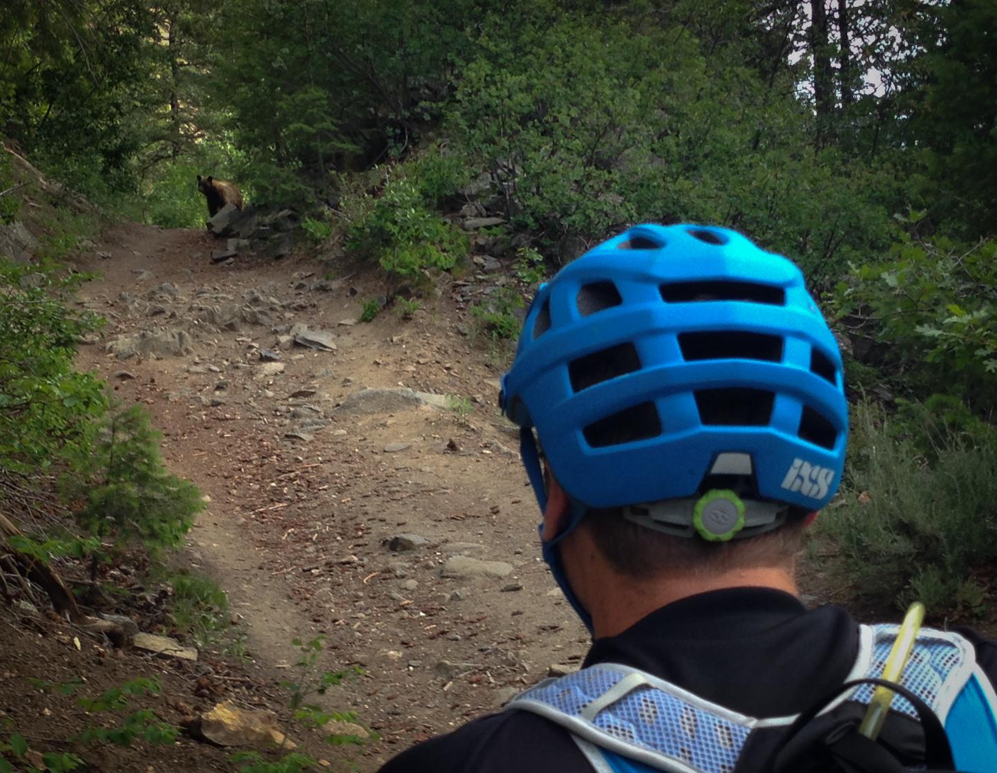 Review Ixs Trail Rs Mountain Bike Helmet Singletracks