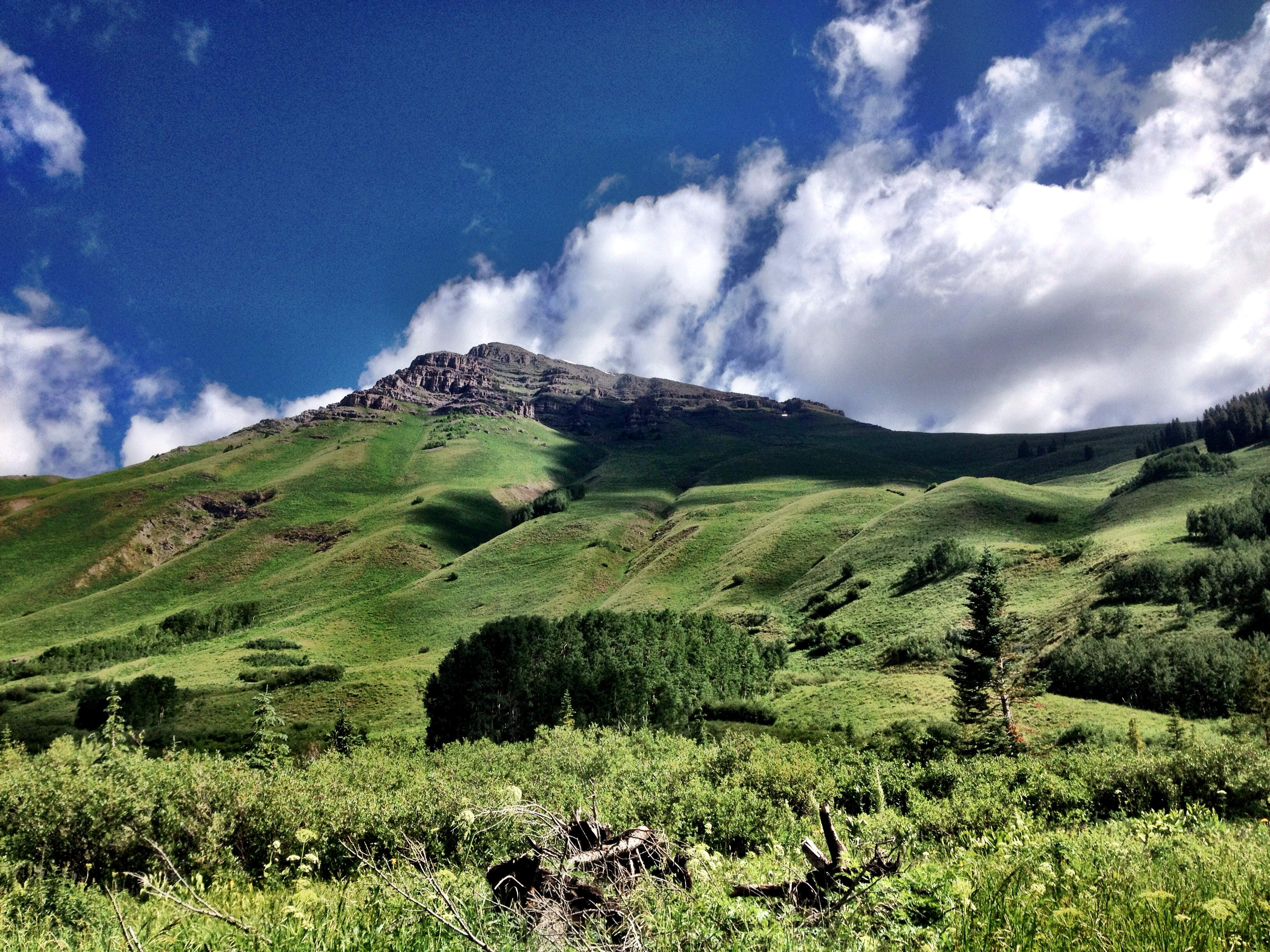 Umm yeah... Crested Butte is amazing.