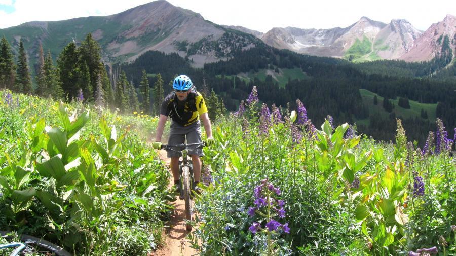 2014-08-08 rkmtb trail 401