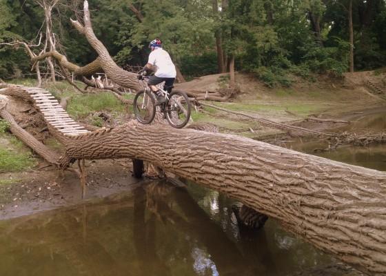 MN River Bottoms 9-Mile Creek log
