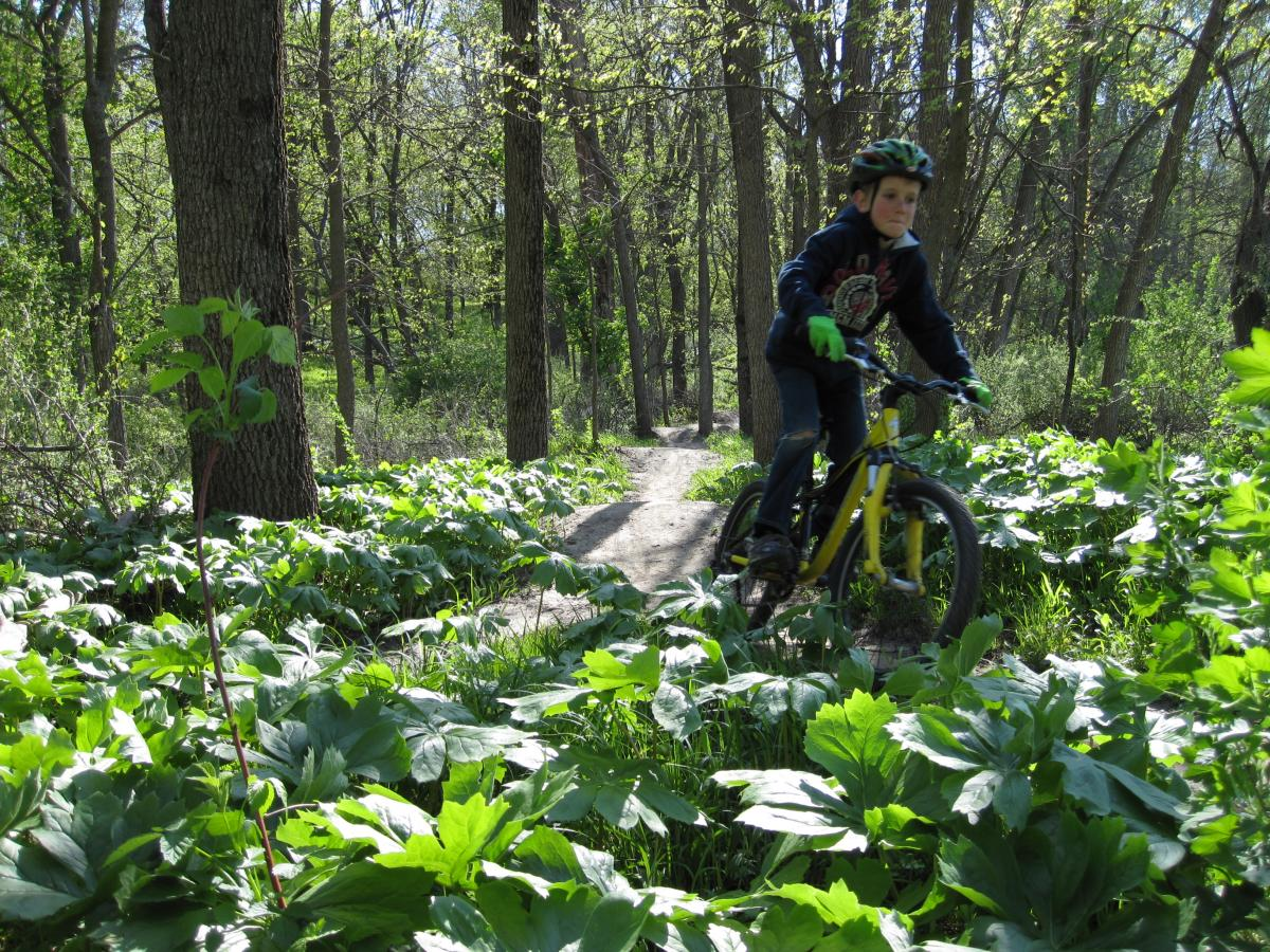 """Many of the trails that LAMBA stewards are solid experiences for kid riders, family-friendly!"" Iowa. Photo: Ken Barker."