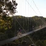 Suspension bridge!