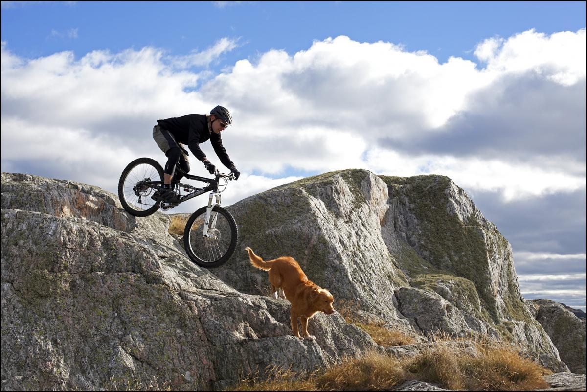 Location: Gothenburg, Sweden Photo: Natasja Jovic Rider: Leo Ranta Traildog: Nova
