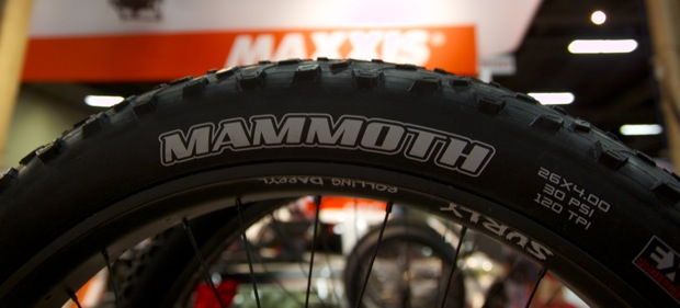 maxxis_mammoth