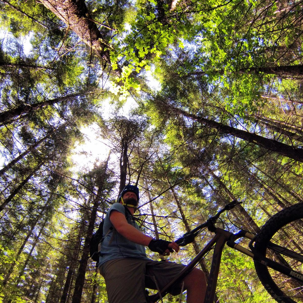 """""""Sometimes you just need to get lost..."""" Trail: Whypass, Eugene, Oregon. Photo: Gabriel Buhler"""