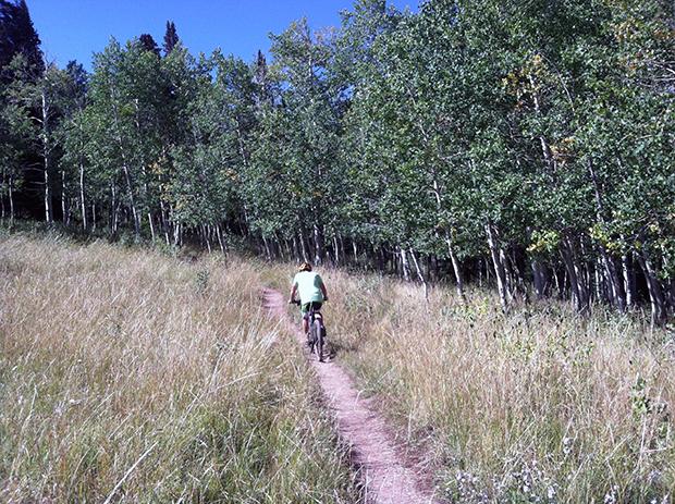 A rider climbs up Pinecone Ridge