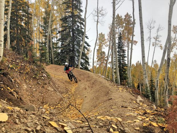 Rider: Nikki Inglis.