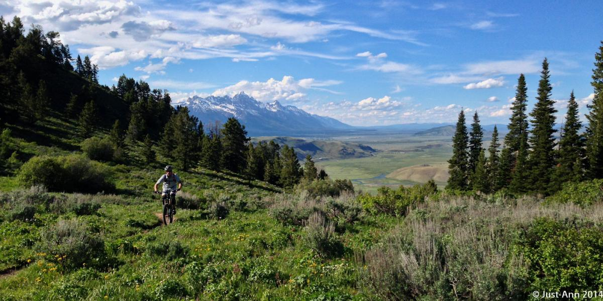 Trail: Cache Creek to Game Creek, Jackson, Wyoming. Photo: Justin70.