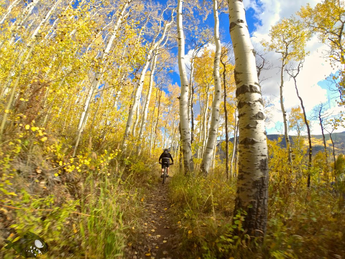 """Finishing up on the North trail after a Red Sandstone-Buffehr loop."" Vail, Colorado. Photo: Erik Proano."