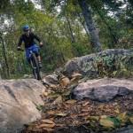 Rocks a plenty on the Ridge Trail