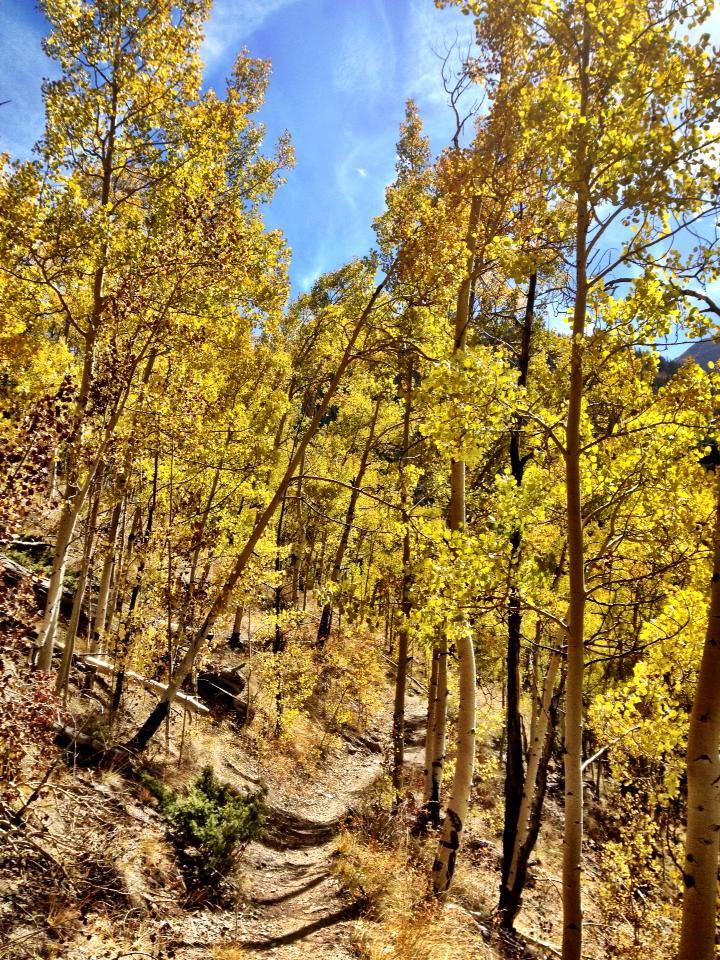 Hopefully there'll still be some amazing fall colors left in early October.