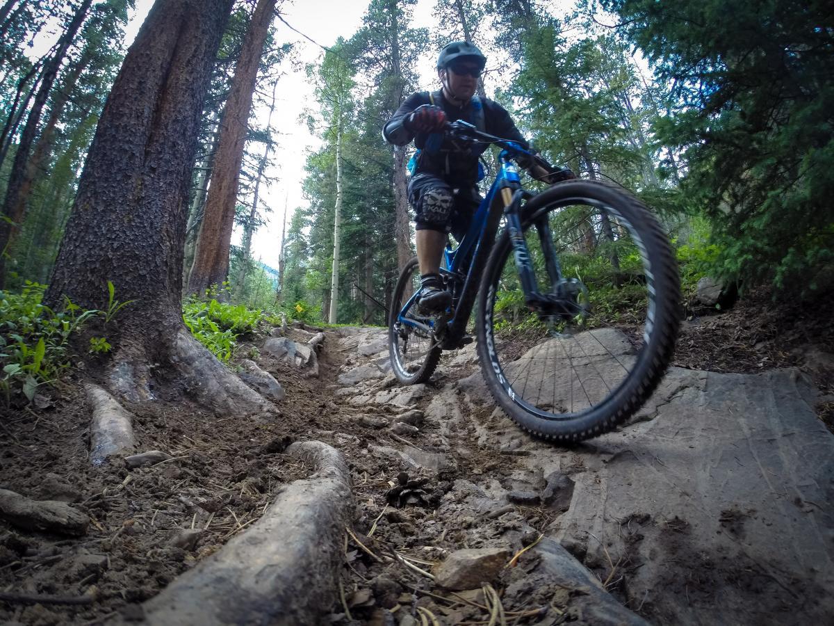 Green's Creek trail. Photo: delphinide.