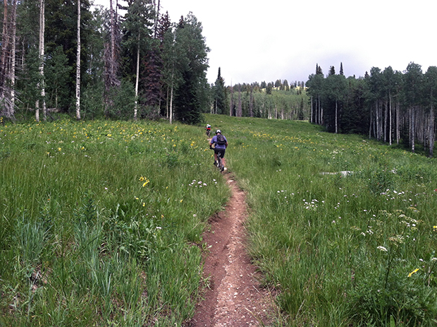 Steamboat Springs is one of the places we explored this year.
