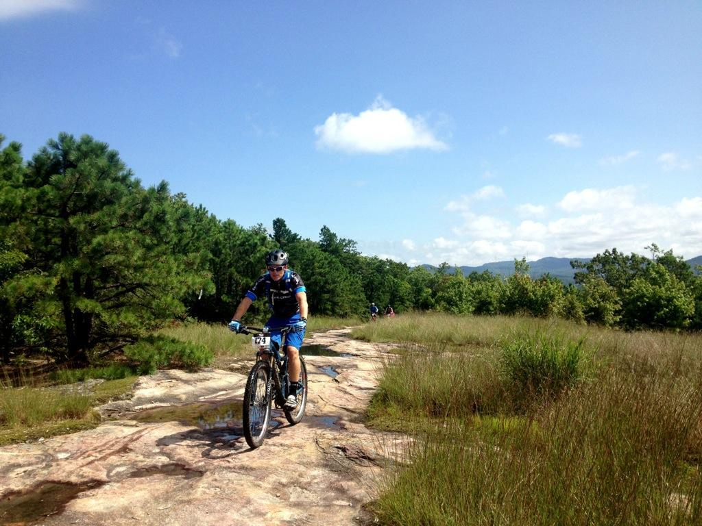 Dupont State Forest. Photo: Greg Heil