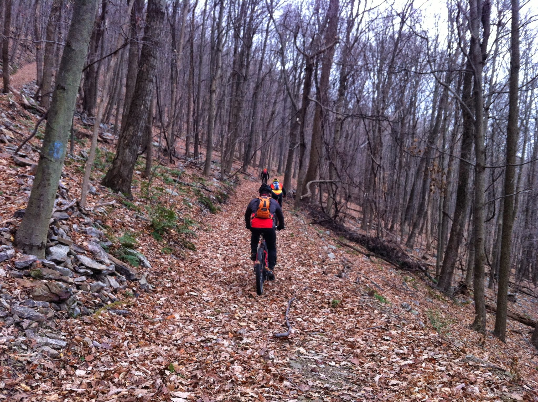 My Top 5 The Best Mountain Bike Trails In Central