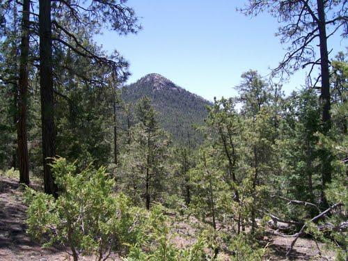 Shaggy peak from Glorieta Baldy Trail  mikeholdsworth via us.geoview.info