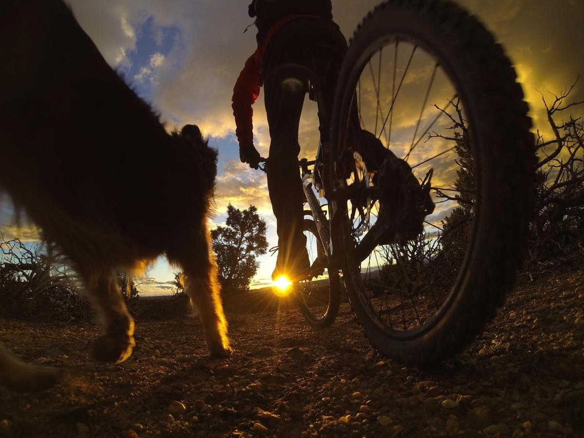 Sunset ride on the Homegrown Trails, Santa Fe, NM. Photo: Bob Ward.