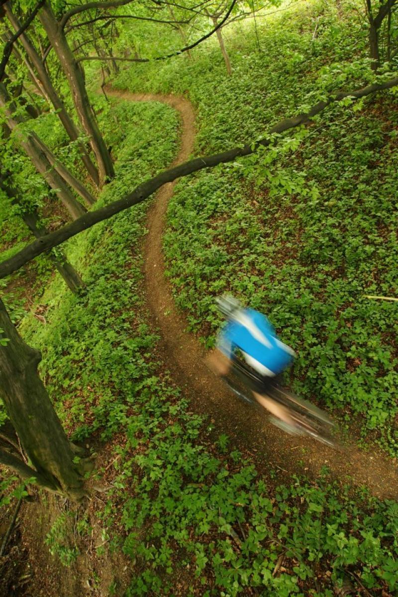 Palacky Creek Trail, Czech Republic. Photo: spesl