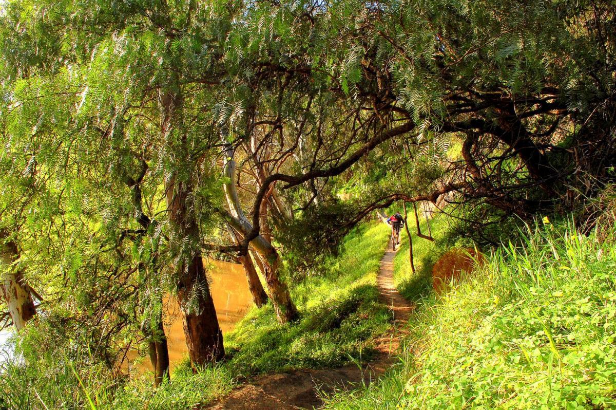 Yarra Trails, Melbourne, Australia. Photo: ottodavies.