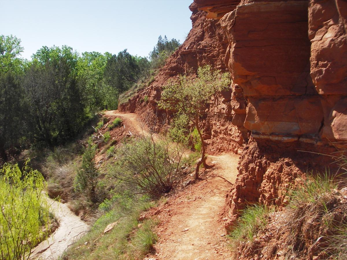 Palo Duro RoadWarrior